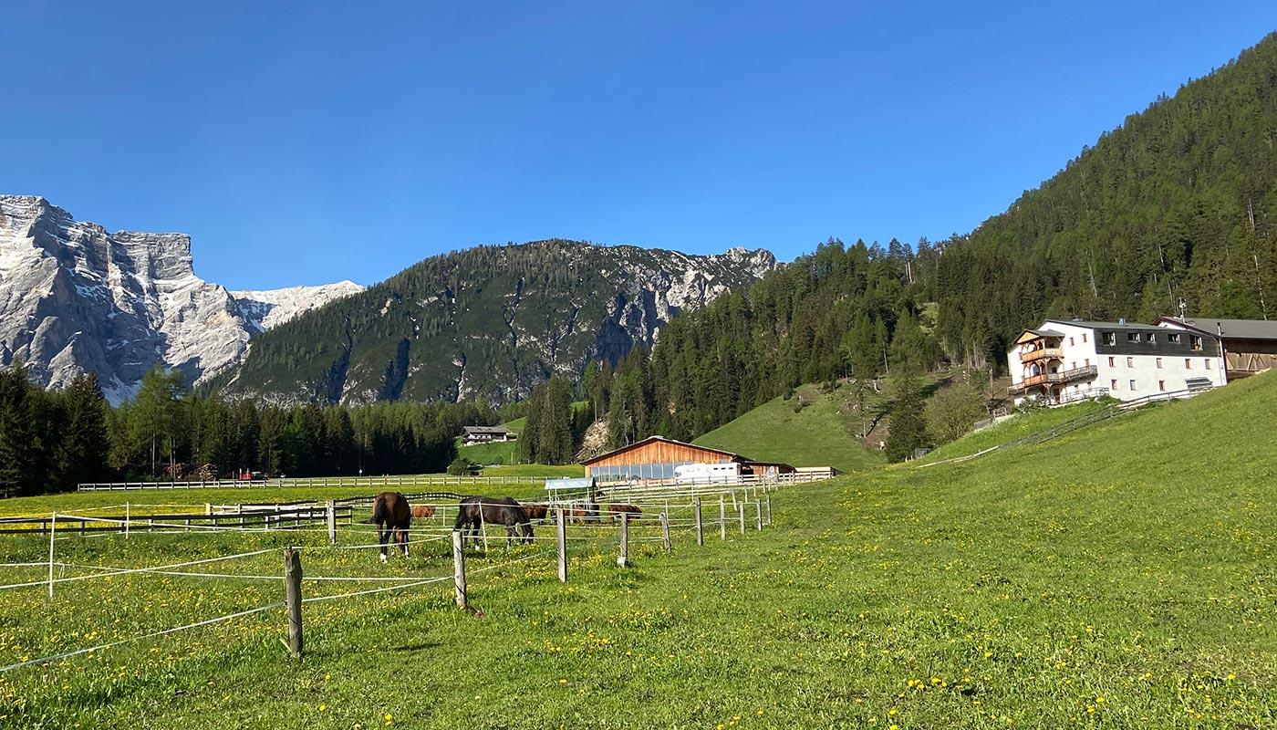 reiterhof-reitunterricht-urlaub-pferd-suedtirol-maneggio-cavallo-vacanza-lezioni-corsi-slider1neu