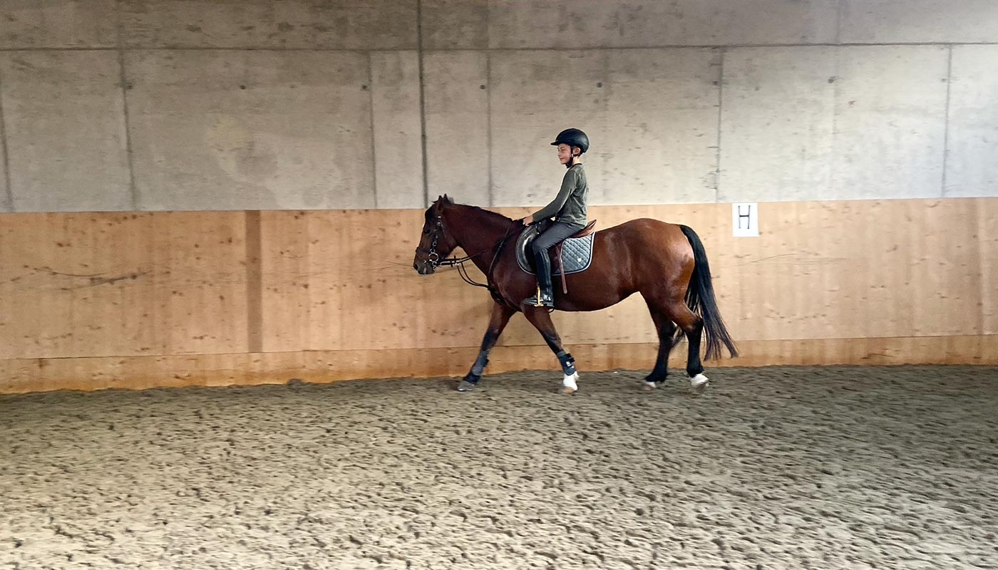 reiterhof-reitunterricht-urlaub-pferd-suedtirol-maneggio-cavallo-vacanza-lezioni-corsi-slider2neu