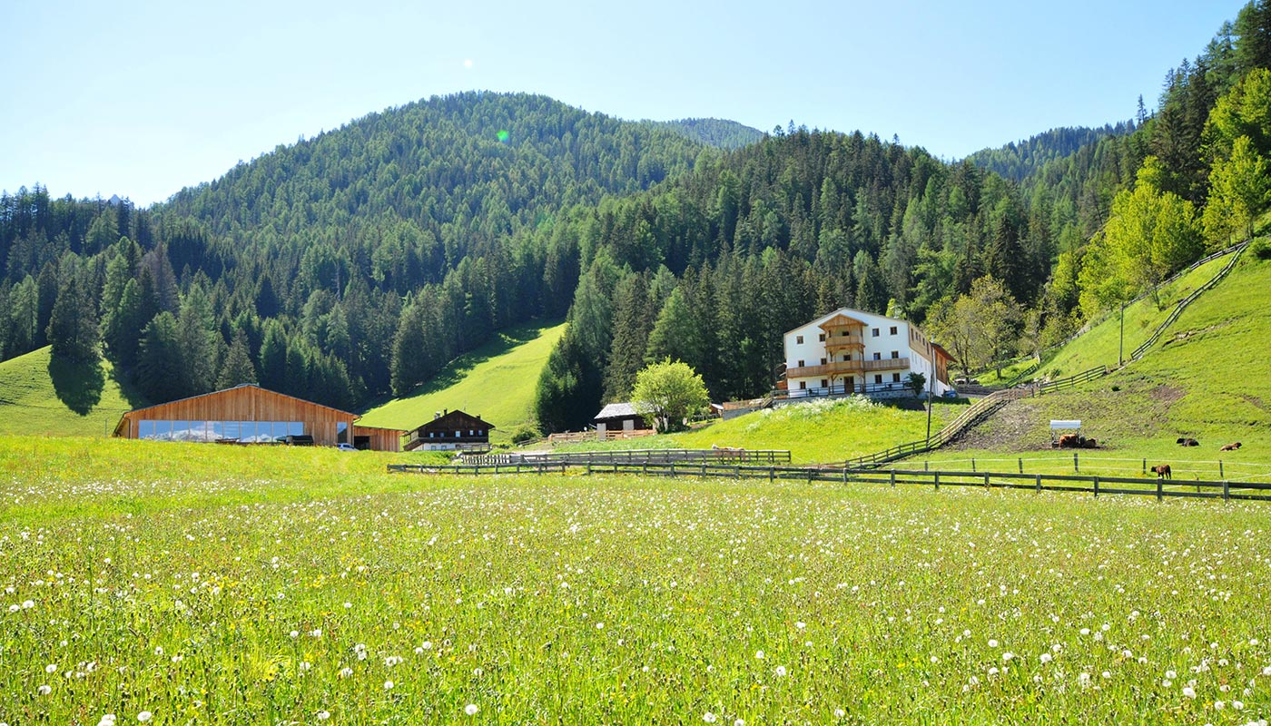 urlaub-zimmer-frühstück-bauernhof-prags-pustertal-vacanza-maso-braies-val-pusteria-rooms-breakfast-farm-holidays-hs1